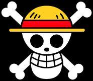 Straw Hat Pirates Jolly Roger