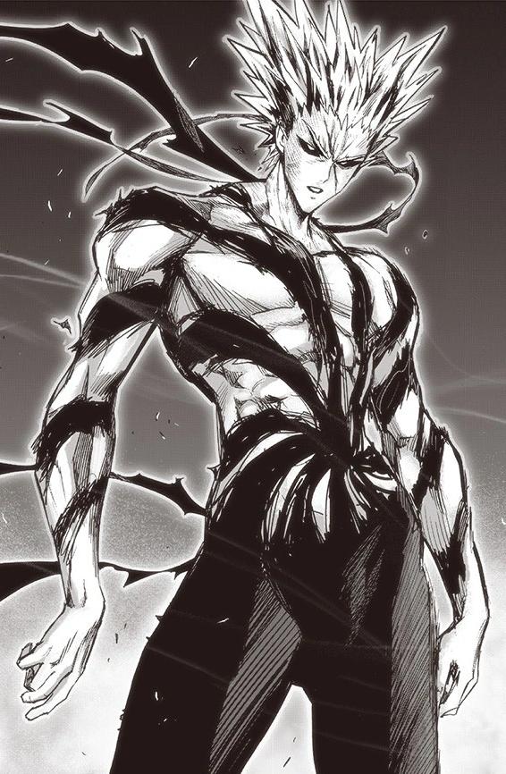 Garou One Punch Man Wiki Fandom