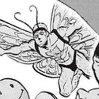 Papillon DX qui vole
