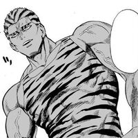 Tiger Marcel (manga)