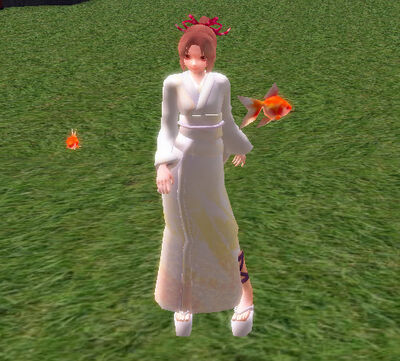 Orange Goldfish.jpg