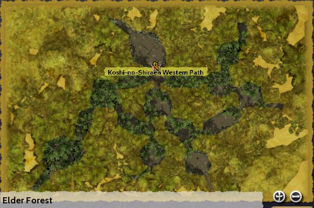 Elder Forest