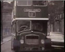 Bus Company.jpg