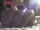 Kakoo Clones