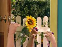 Oobi-Video-Kako-in-sunglasses