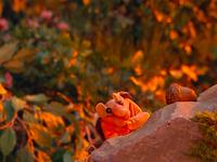 Oobi-Nature-Walk-chipmunk