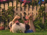 Oobi-Kako's-Puppy-food-bowl
