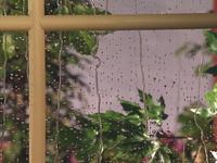 Oobi-Rainy-Day-window-view