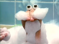 Oobi-shorts-Bubble-Bath-mustache
