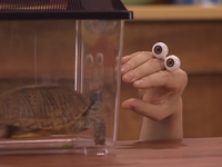 Oobi-Playdate-Oobi-meeting-his-new-pet