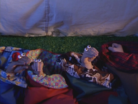Oobi-Camp-Out-Grampu-snoring
