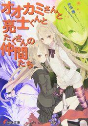 Light Novel Volume 12 Cover.jpg