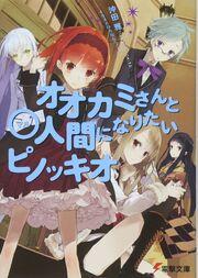 Light Novel Volume 11 Cover.jpg