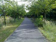 Bild 11 Norwegerstraße Park