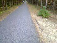 Bild 3 Asphaltweg