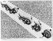 Escher, Curl-up