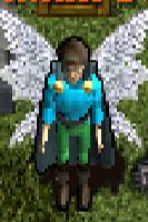 Bo'Kor Wings.png