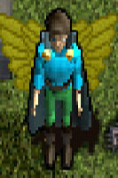 Y No'Kor Wings .png