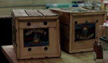 Neptunes produce.jpg