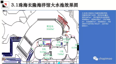 Chimelong 985547.png