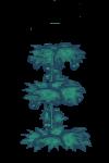 Plant hop 3.png