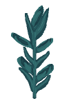 Plant corn 5.png