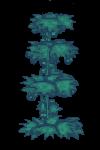 Plant hop 4.png