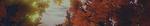 Premium Background 3