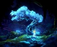 Light tree burrows