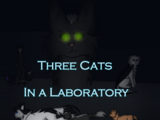 Three Cats in a Laboratory