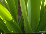 Windows:Vista:5259:winmain idx02