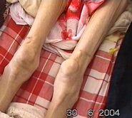 2004-8-13-wangxia2