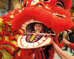 Category:Chinese New Year's