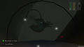 Clear picture of the anglerfish.png