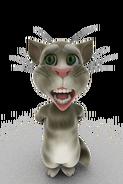 Cat talk0015