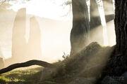 Craigh-na-Dun-Outlander Gallery5 wm.jpg