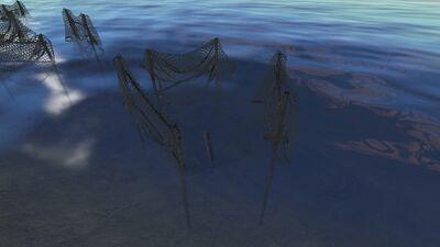 Fishtrap2.jpg