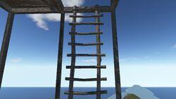 Ladderceilling.jpg
