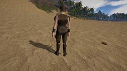 Womanbacksteel.jpg