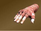 Ugake Otarah's Arm Wraps