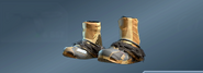 HuntMaster'sBoots