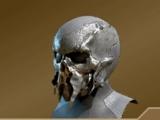 Marshal's Helmet