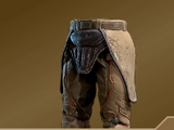Leg Armor of the Cannonball