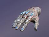 Praetorian's Gloves