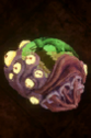 Scourge Cocoon.png