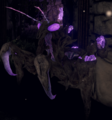 Mana Mantis - MantisMana.png