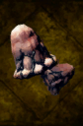 Nightmare Mushroom.png