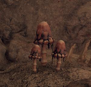 Nightmare Mushrooms (Gatherable).png