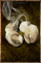 Grilled Crabeye Seed.png