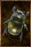 Ochre Spice Beetle.png